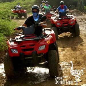 curacao quad tour
